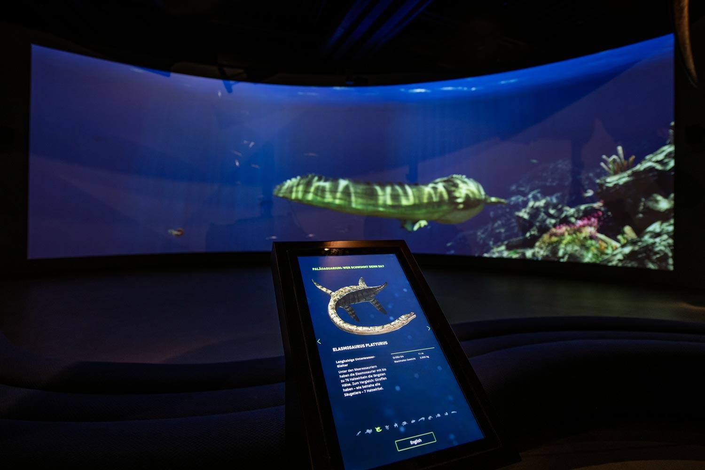 Saurier Giganten der Meere, Paleoaquarium, Lokschuppen Rosenheim